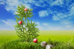 Christmas tree on the meadow. Christmas tree with stones on green fresh moss Royalty Free Stock Photos