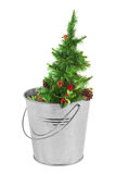 Christmas tree in a metal bucket Royalty Free Stock Images