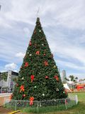 Christmas tree in Miami, USA on cloudy sky background. Holiday decorations with balls and red bows in downtown district with high buildings. xmas and new year Stock Photography