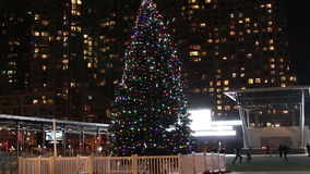 Christmas Tree at Mississauga Square stock footage