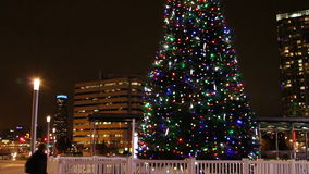 Christmas Tree at Mississauga Square stock video