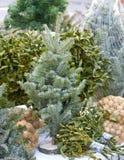 Christmas tree and mistletoe on the market Royalty Free Stock Photography