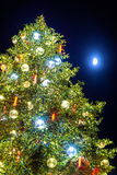 Christmas tree and Moon in Strasbourg - Alsace Stock Photography