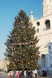 Christmas tree in Moscow Kremlin Royalty Free Stock Photo