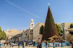 Christmas tree near Nativity church, Bethlehem Royalty Free Stock Image