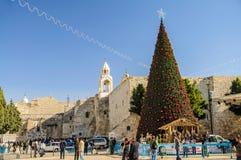 Christmas tree near Nativity church, Bethlehem. Christmas tree on the square of Bethlehem, Palestine Royalty Free Stock Image