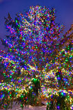 Christmas tree near panther stadium in charlotte north carolina Royalty Free Stock Photos
