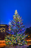 Christmas tree near panther stadium in charlotte north carolina Stock Photography