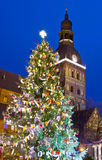 Christmas tree near Riga Cathedral Royalty Free Stock Images