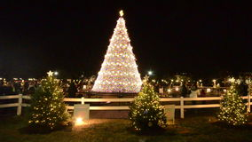 Christmas tree near the White House Washington DC stock video footage