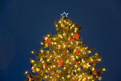 Christmas tree night Stock Photography