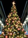 Christmas Tree at Night Stock Image