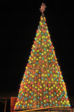 Christmas Tree in the night Stock Photography