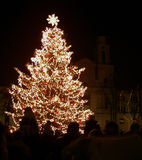 Christmas tree in night city. People looked in christmas tree Stock Image