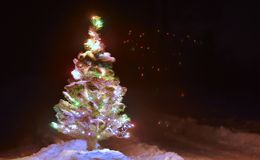 Christmas tree in the night field Royalty Free Stock Photos