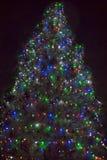 Christmas tree in the night Stock Photo
