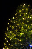 Christmas tree  night with lights Stock Image