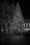 Christmas tree at night with lights. Marienplatz in Munich Stock Photos