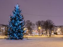 Christmas tree at night in Riga Royalty Free Stock Images
