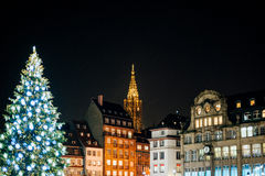 Christmas Tree and Notre-Dame cathedral at night Stock Images