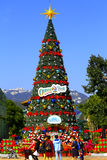Christmas tree at ocean park, hong kong Royalty Free Stock Photography