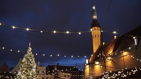 Christmas tree at old tallinn town hall square stock video footage