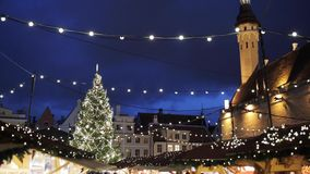 Christmas tree at old tallinn town hall square stock video