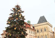 Christmas tree on Old Town Square in Prague Royalty Free Stock Image