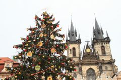 Christmas tree on Old Town Square in Prague Stock Photography