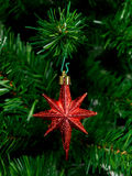 Christmas Tree Ornament. A red christmas ornament hanging on a Christmas tree Royalty Free Stock Images
