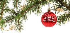 Christmas Tree Ornament Background. Red christmas bauble  on a tree isolated on a white background Royalty Free Stock Photography