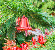 Christmas tree and ornament Royalty Free Stock Image