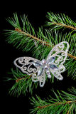 Christmas tree ornaments .butterfly stock images