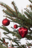 Christmas tree with ornaments Royalty Free Stock Photography
