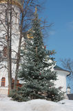 Christmas tree in an orthodox monastery Stock Photos