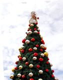 Christmas tree outdoor royalty free stock images