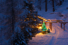 Christmas tree outdoor decoration. In a snowy night with gifts and illuminatedn wooden  home Stock Images