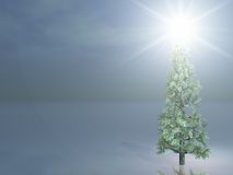 Christmas Tree outdoors with bright Star Stock Photo