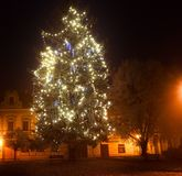 The Christmas tree outdoors.  Lights in a winter town. Foggy and snowy weather. Royalty Free Stock Photography