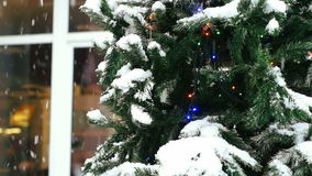 Christmas tree outdoors. New year decoration in town. Decorated christmas tree with blinking garland standing near a windows of a shop stock video