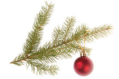 Christmas tree outfit with a decorative red ball. Royalty Free Stock Photo