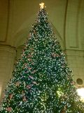 Christmas Tree outside train station Royalty Free Stock Images