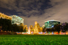 Christmas tree in park Fort Lauderdale, Florida, USA Royalty Free Stock Images