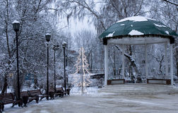 Christmas tree in park, Moscow Royalty Free Stock Photo