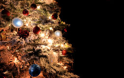 Christmas Tree Part Stock Images
