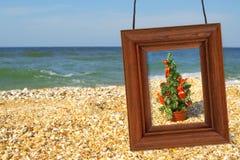 Christmas Tree and photographic frame Stock Photos