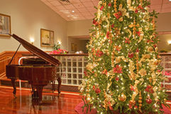Christmas tree and piano. A view of a decorative Christmas tree and baby grand piano ready for a Christmas party or reception Royalty Free Stock Image