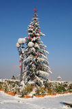 Christmas tree at Piazzale Michelangelo, in Winter season, Florence Stock Photography