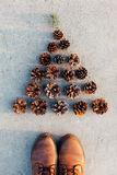 Christmas Tree of Pine cones. Decorated Christmas Tree of Pine cones Royalty Free Stock Image