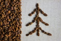 Christmas tree and pine nuts. Against the background of a rough canvas lined with pine nuts. Side is a vertical layer of brown nuts. Side lighting stock photography
